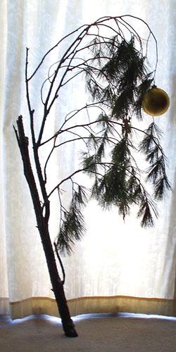 Charlie-Brown-style Christmas tree - 2012 Eibhlin